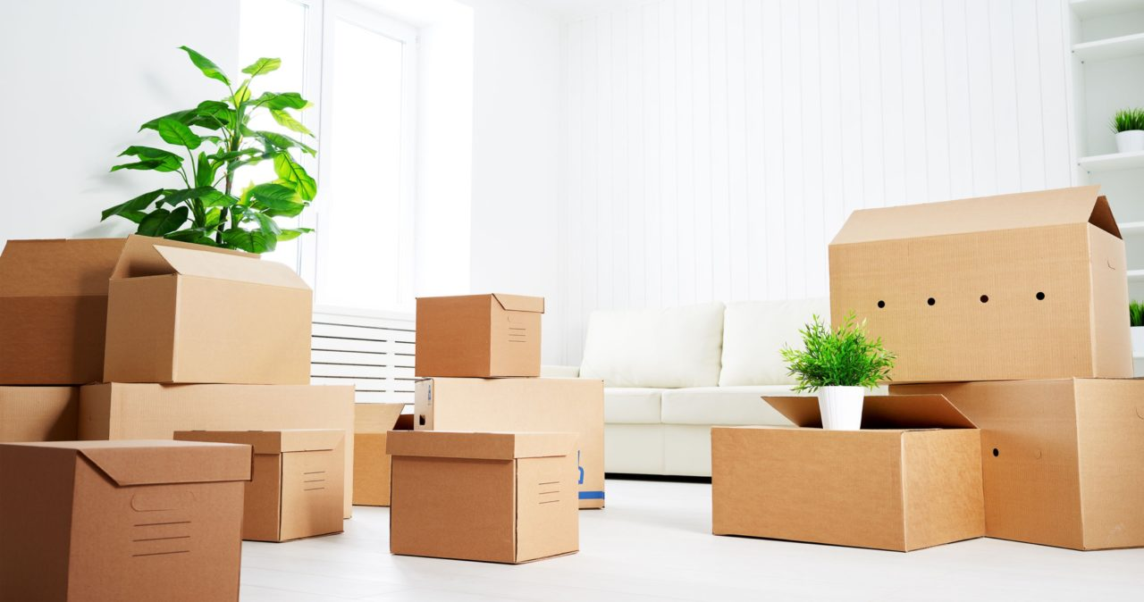 Moving Tips: Items to Pack with You for Moving Day