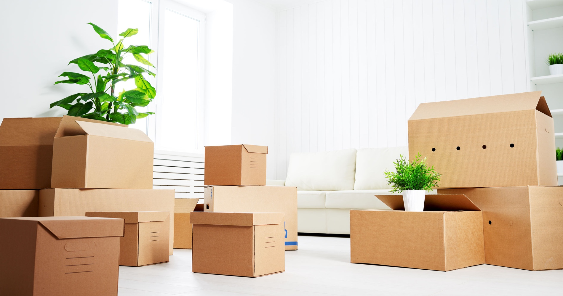 port st lucie movers provided by devries family moving u0026 storage